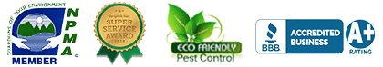 pest control uniondale, Rest Easy pest Control, Pest control services, Long Island NY, NYC, Rockland, Westchester, New York, Long Island, Pest Control, Exterminator, Brooklyn, Bronx, Staten Island, NY, exterminator, Nassau County, Suffolk County, bugs, bed bugs, organic pest control, organic exterminator, organic pest, Getting a termite infestation problem under control quickly, contact us, rest easy, pest control, exterminator, nyc, new york city, brooklyn, queens, nassau, suffolk, new york, rockland westchester, bed bugs, organic pest, Rest Easy pest Control, Pest control services, Long Island NY, NYC, Rockland, Westchester, New York, Long Island, Pest Control, Exterminator, Brooklyn, Bronx, Staten Island, NY, exterminator, Nassau County, Suffolk County, bugs, bed bugs, organic pest control, organic exterminator, organic pest, ants, ants persisting,