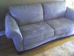 Find Bed Bugs, bed-bug-info-couch