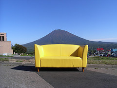 household-bugs-couch-3