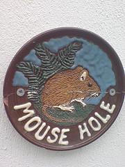 Mice Infestation, mouse-hole-bug-problems