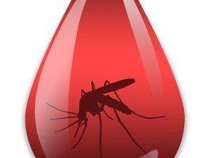 Mosquito-Borne Diseases: Malaria in the U.S