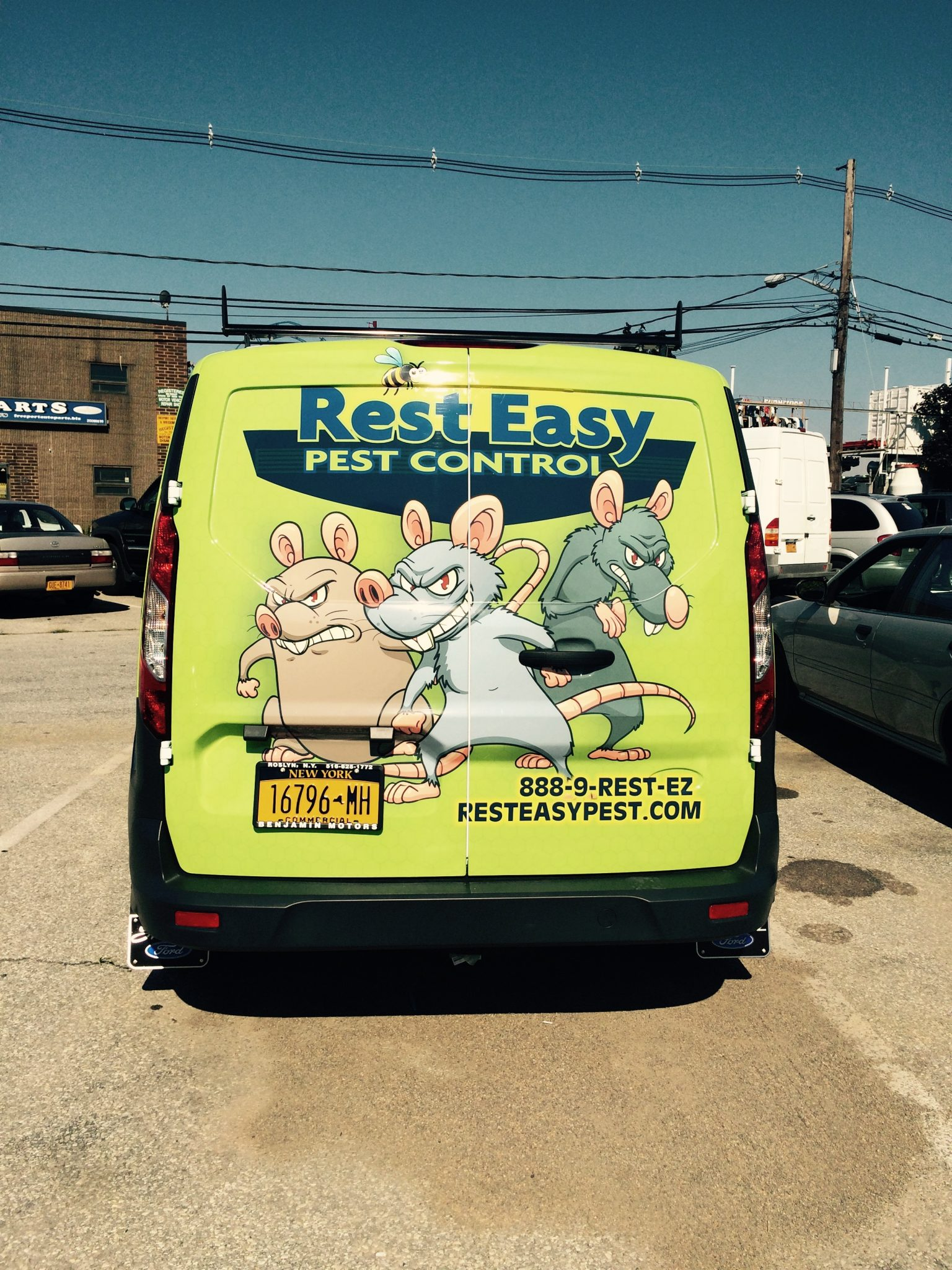 epidemic, Rest Easy pest Control, Pest control services, Long Island NY, NYC, Rockland, Westchester, New York, Long Island, Pest Control, Exterminator, Brooklyn, Bronx, Staten Island, NY, exterminator, Nassau County, Suffolk County, bugs, bed bugs, organic pest control, organic exterminator, organic pest, Getting a termite infestation problem under control quickly, contact us, rest easy, pest control, exterminator, nyc, new york city, brooklyn, queens, nassau, suffolk, new york, rockland westchester, bed bugs, organic pest, Rest Easy pest Control, Pest control services, Long Island NY, NYC, Rockland, Westchester, New York, Long Island, Pest Control, Exterminator, Brooklyn, Bronx, Staten Island, NY, exterminator, Nassau County, Suffolk County, bugs, bed bugs, organic pest control, organic exterminator, organic pest, ants, ants persisting